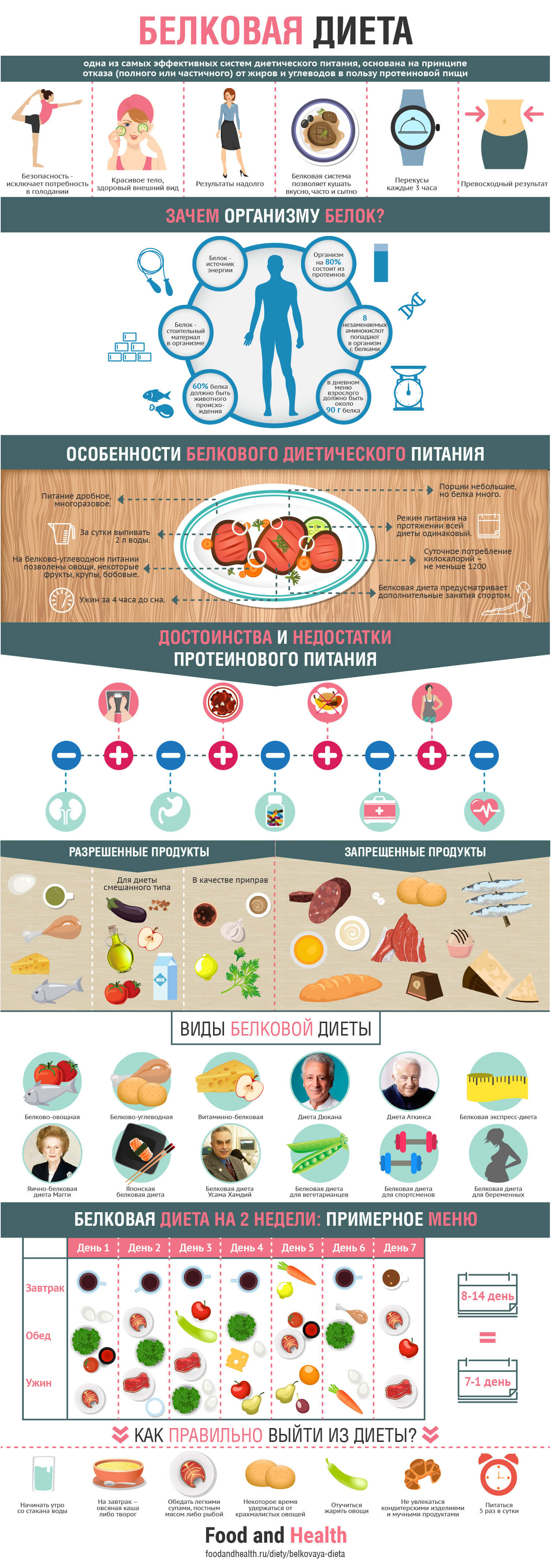 Белковая диета - инфографика