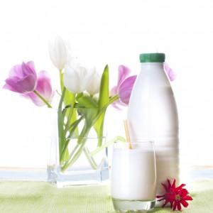 Преимущества и недостатки кефирной диеты
