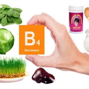 Биологическая роль витамина В4