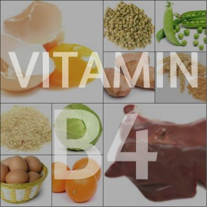 Суточная потребность в витамине В4