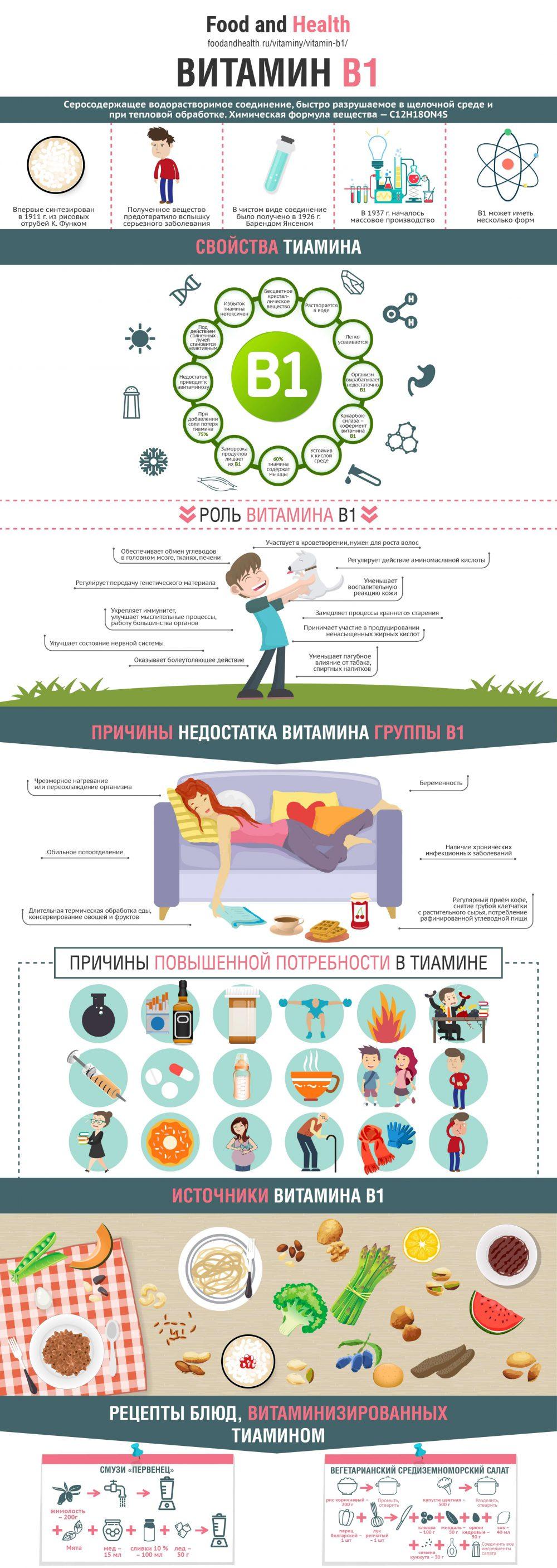 Витамин B1 - инфографика