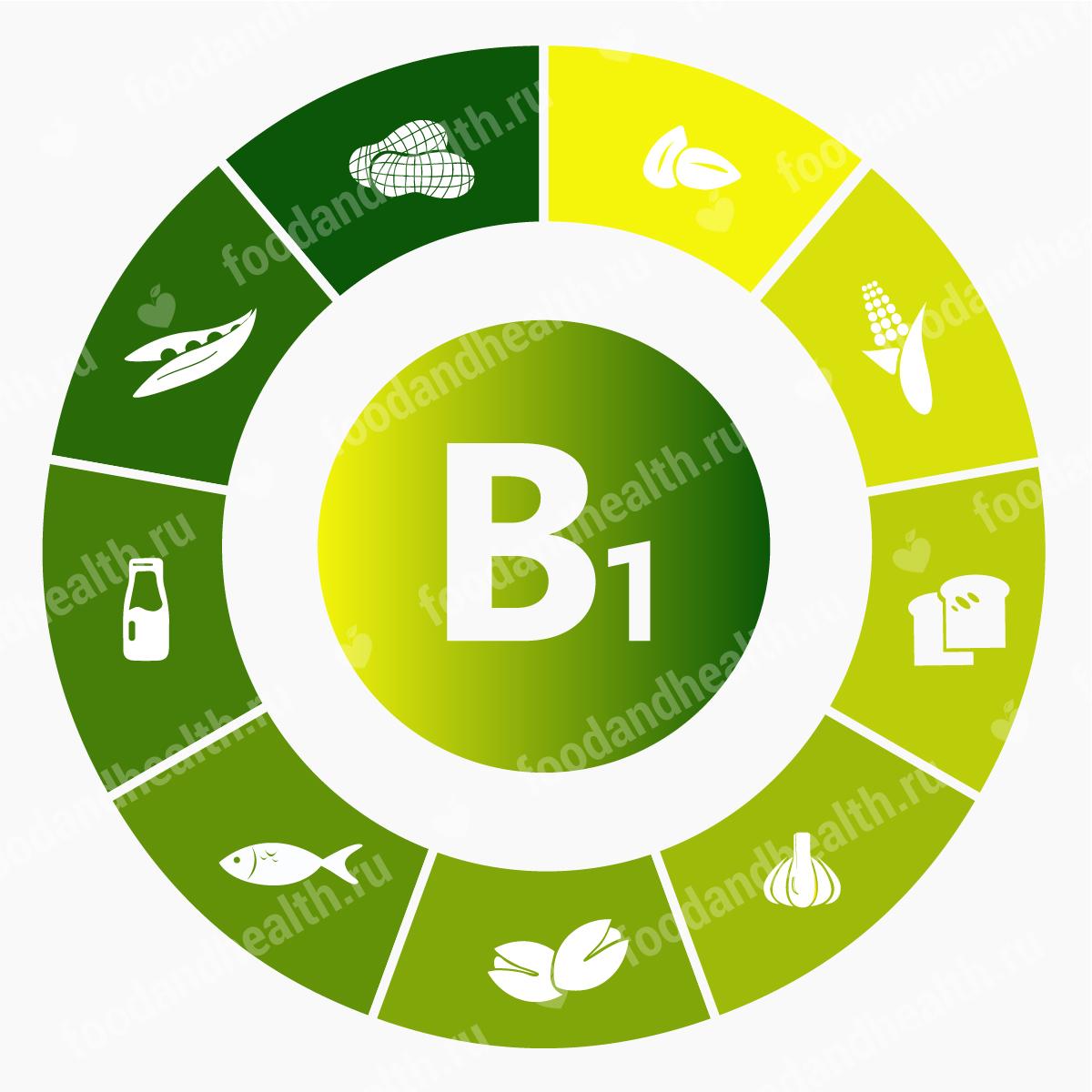 Витамин B1, тиамин: свойства и польза