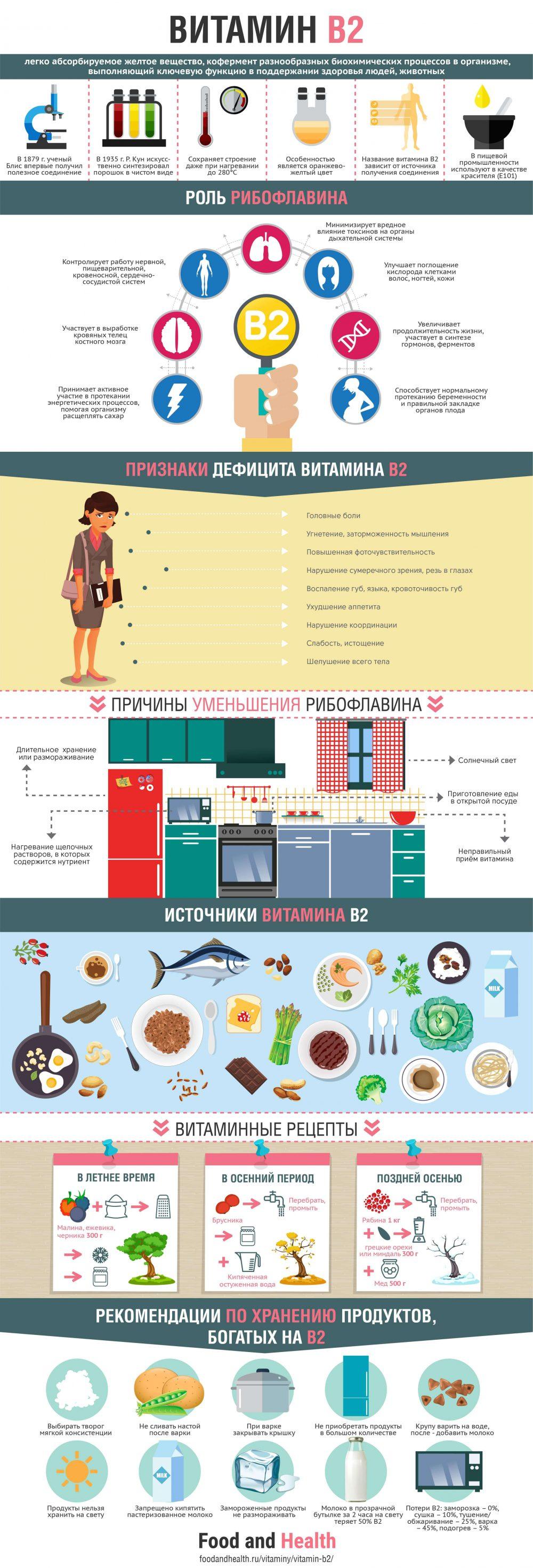 Витамин B2 - инфографика