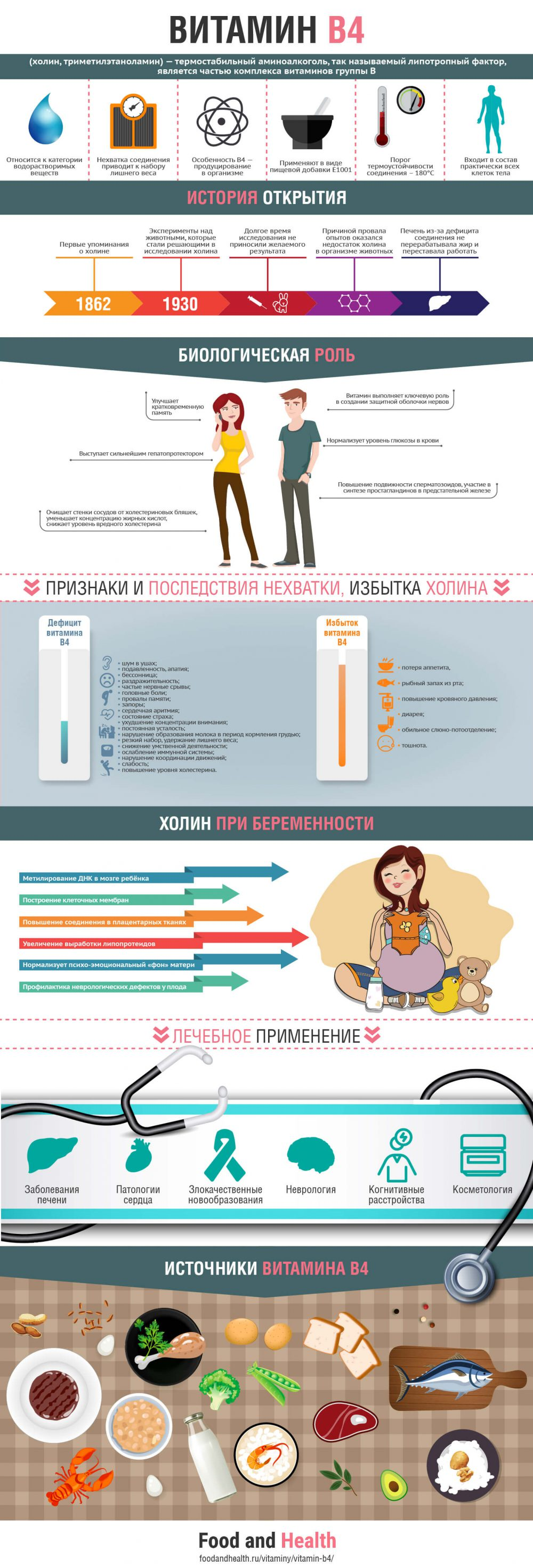 Витамин B4 - инфографика