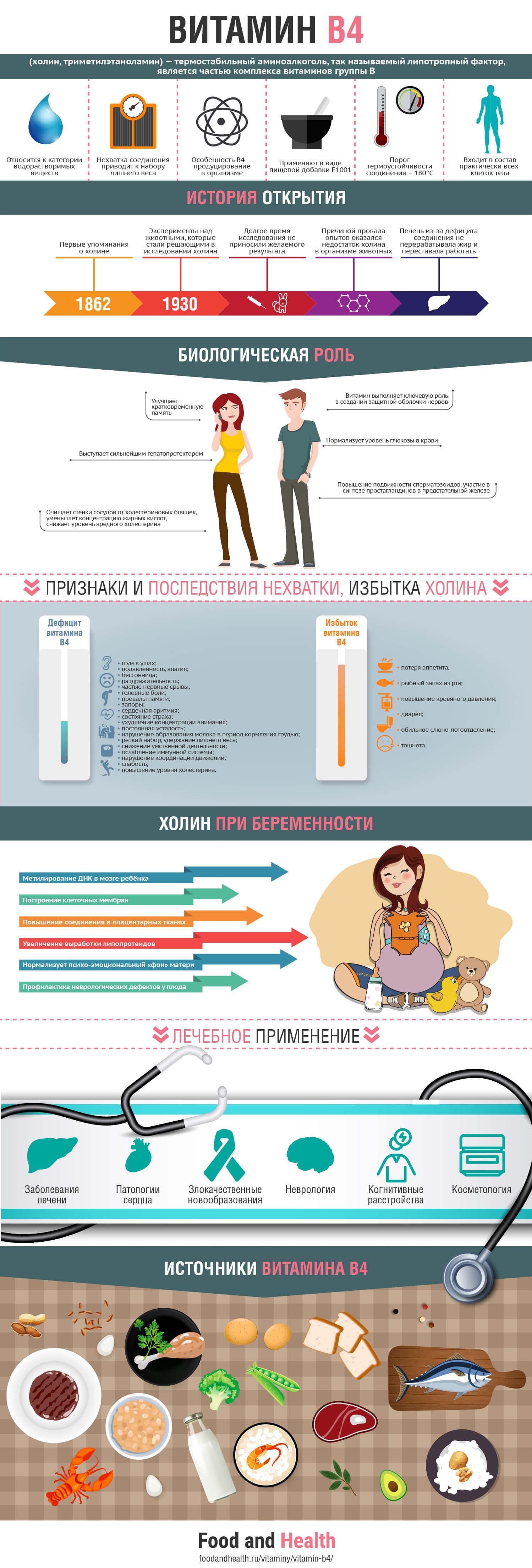 Витамин B4: инфографика