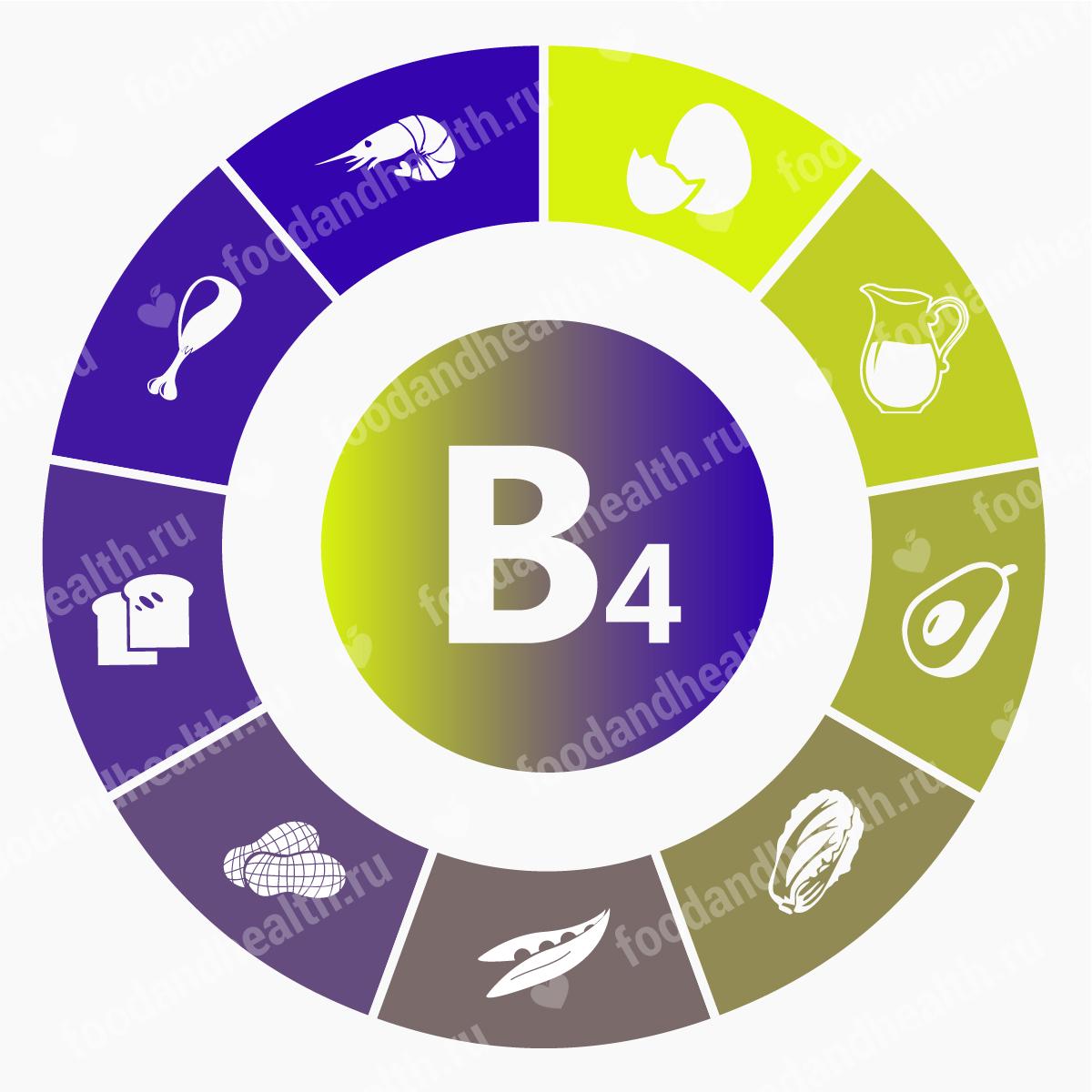 Холин (витамин B4): функции в  организме и в каких продуктах содержится?