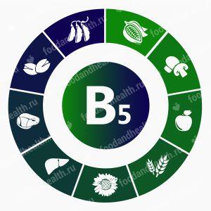 Общие сведения о витамине В5