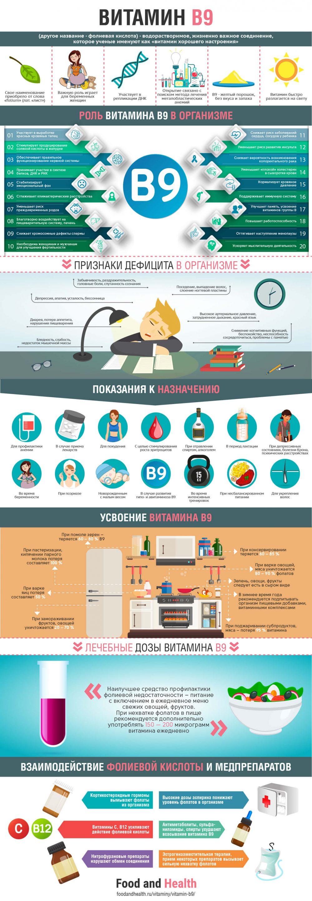 Витамин B9 - инфографика