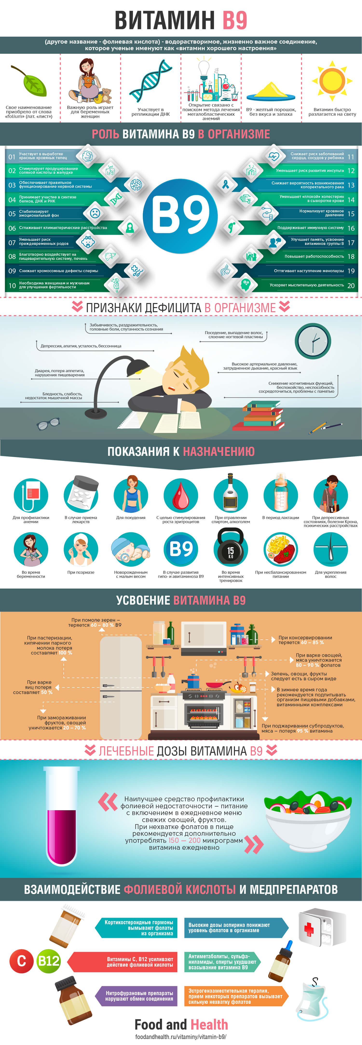 Витамин B9: инфографика