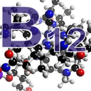 Физиологическая роль витамина В12