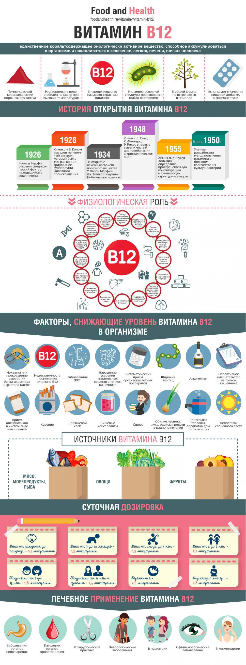 Витамин B12 - инфографика