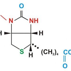 Витамин В7, как кофактор биохимии