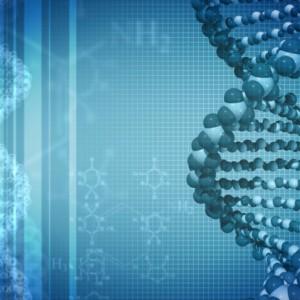 Синтез белков