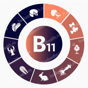 Витамин B11