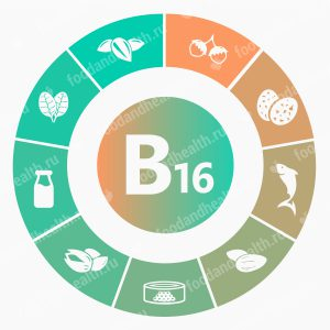 http://foodandhealth.ru/wp-content/uploads/2016/02/vitamin-b16-300x300.jpg