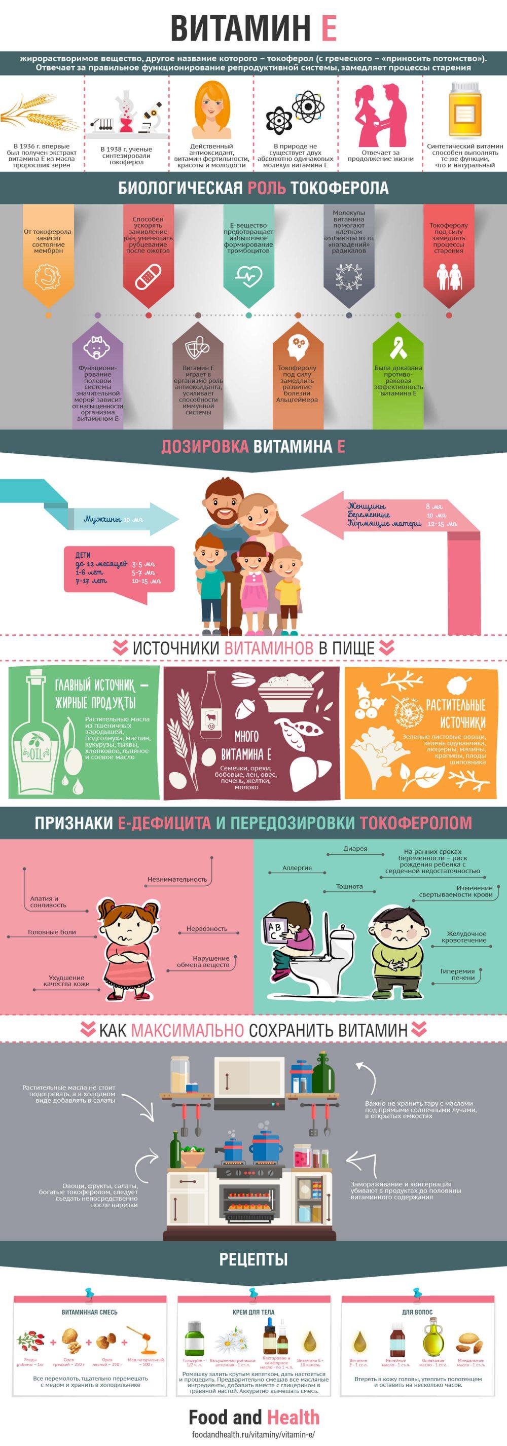 Витамин E - инфографика