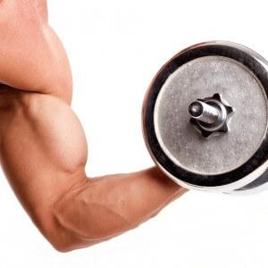 Значение белков для человека