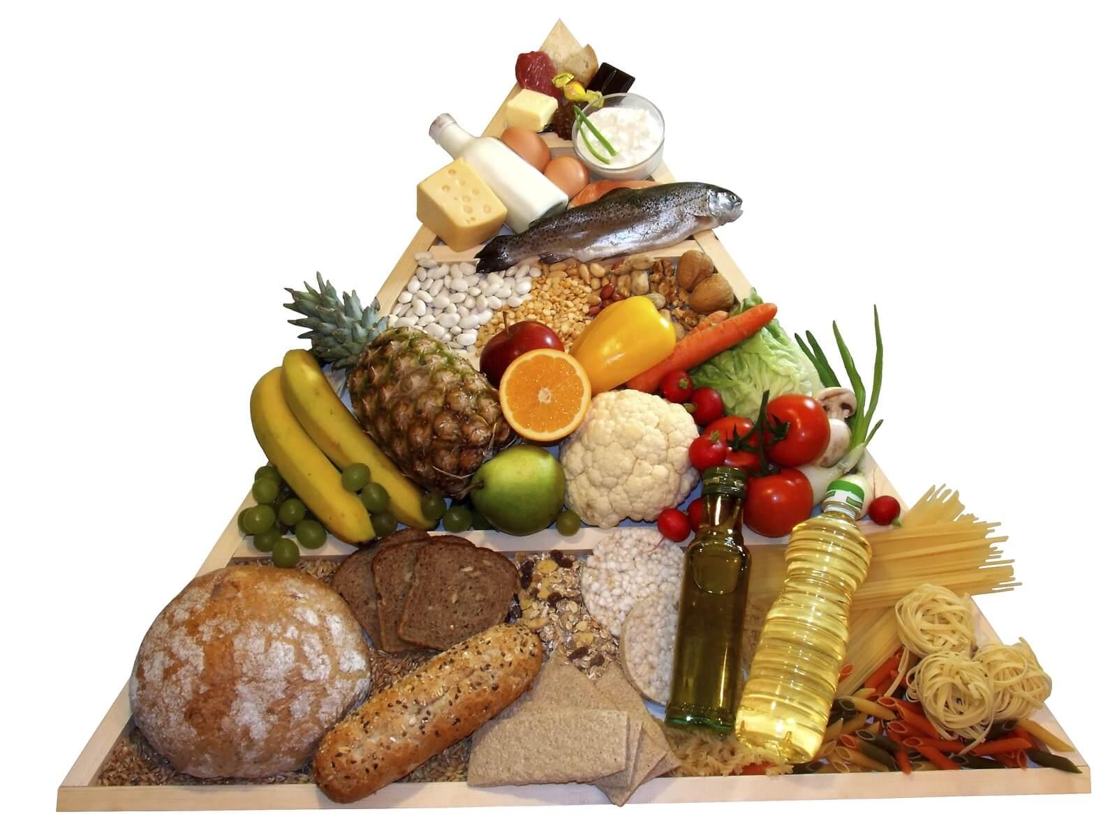 Белки жиры и углеводы в организме человека