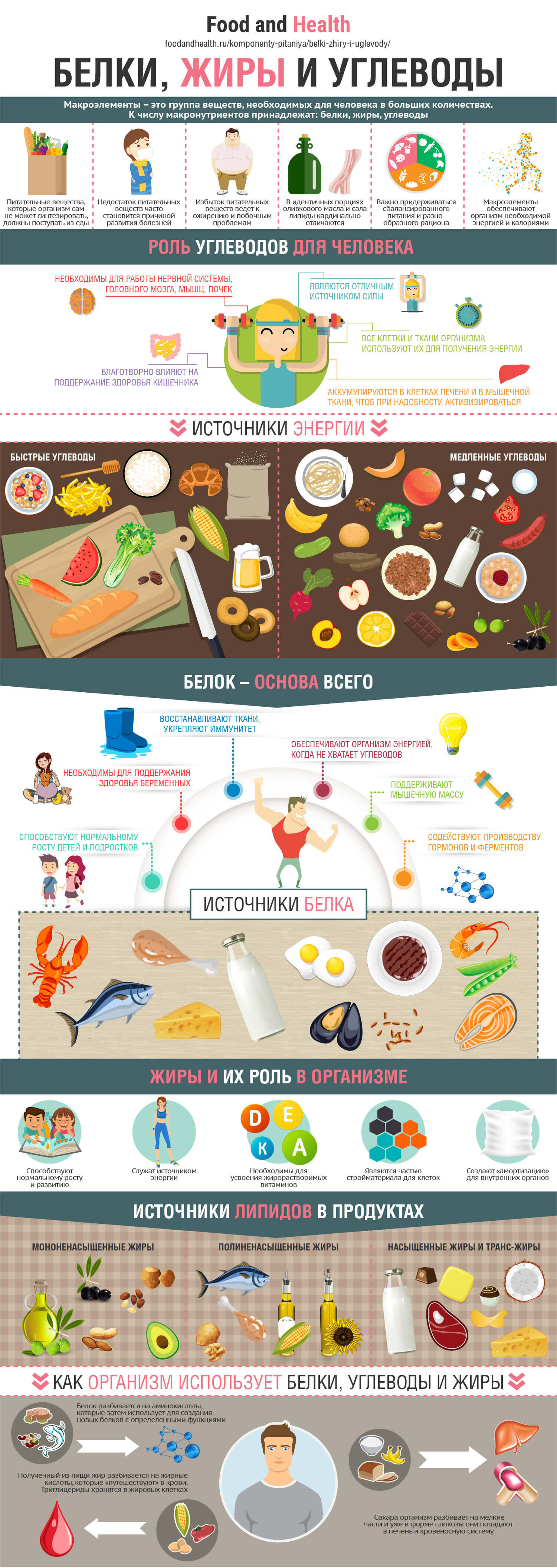 Салаты белки жиры углеводы