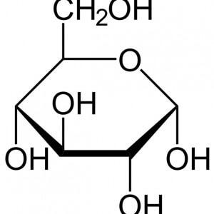 Простые углеводы. Дисахариды