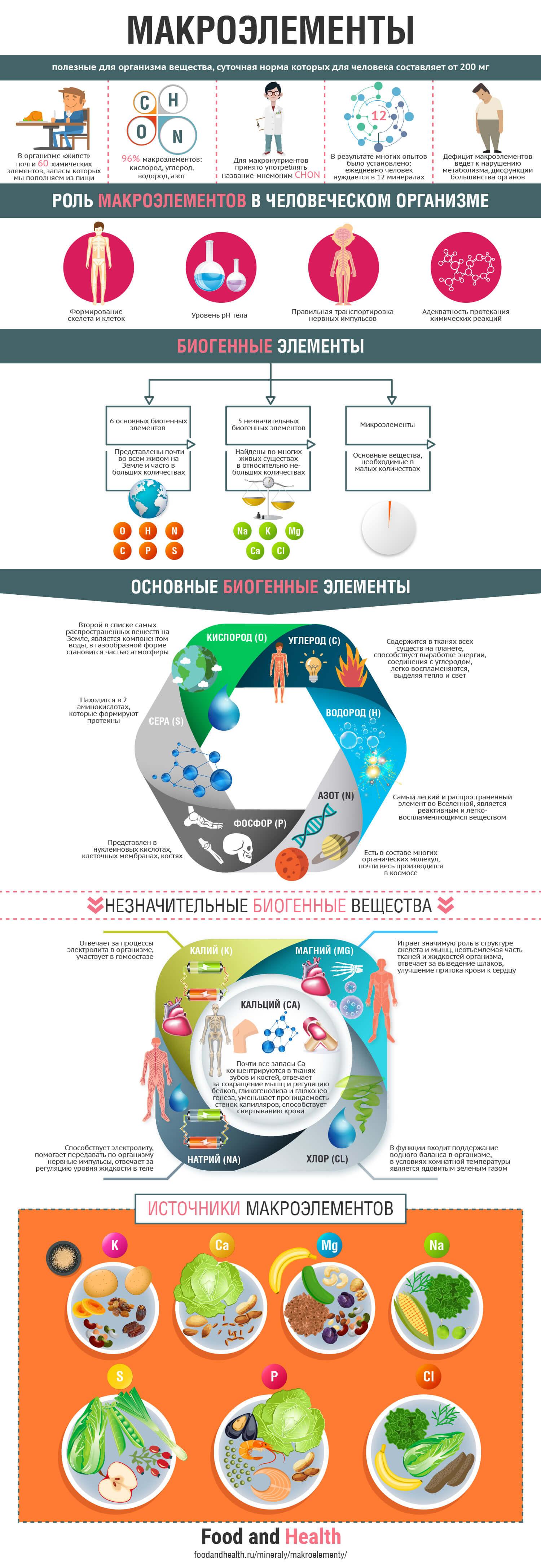 Макроэлементы: инфографика