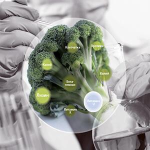 Показания и противопоказания к витамину U