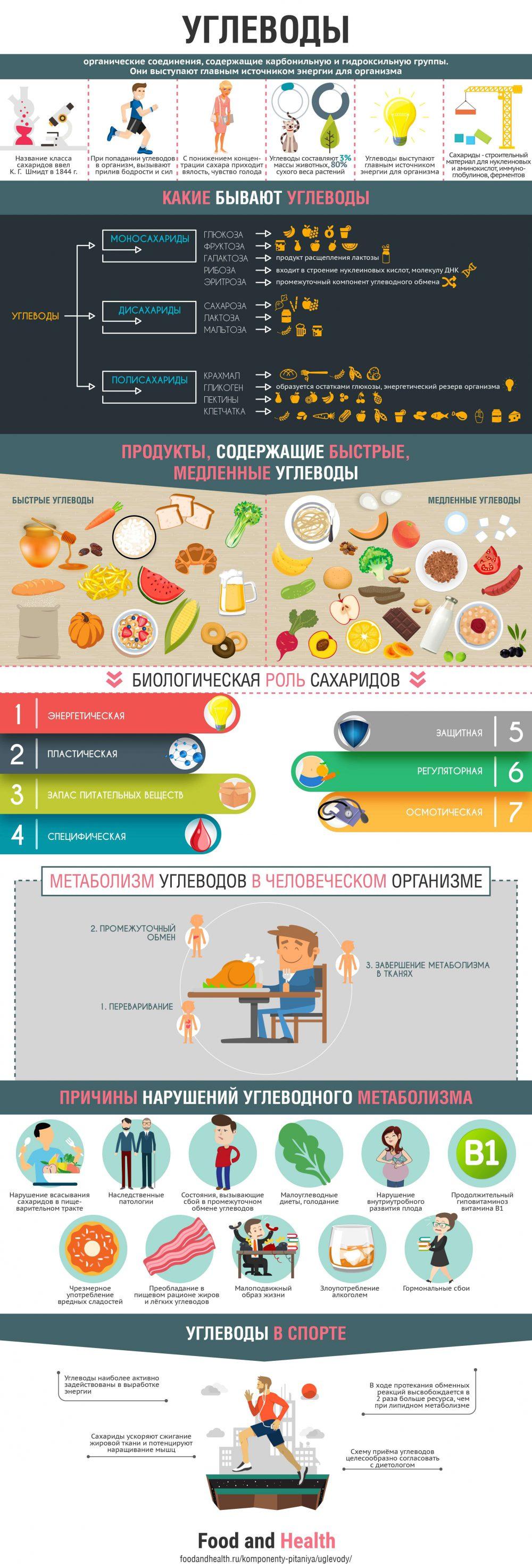Углеводы - инфографика
