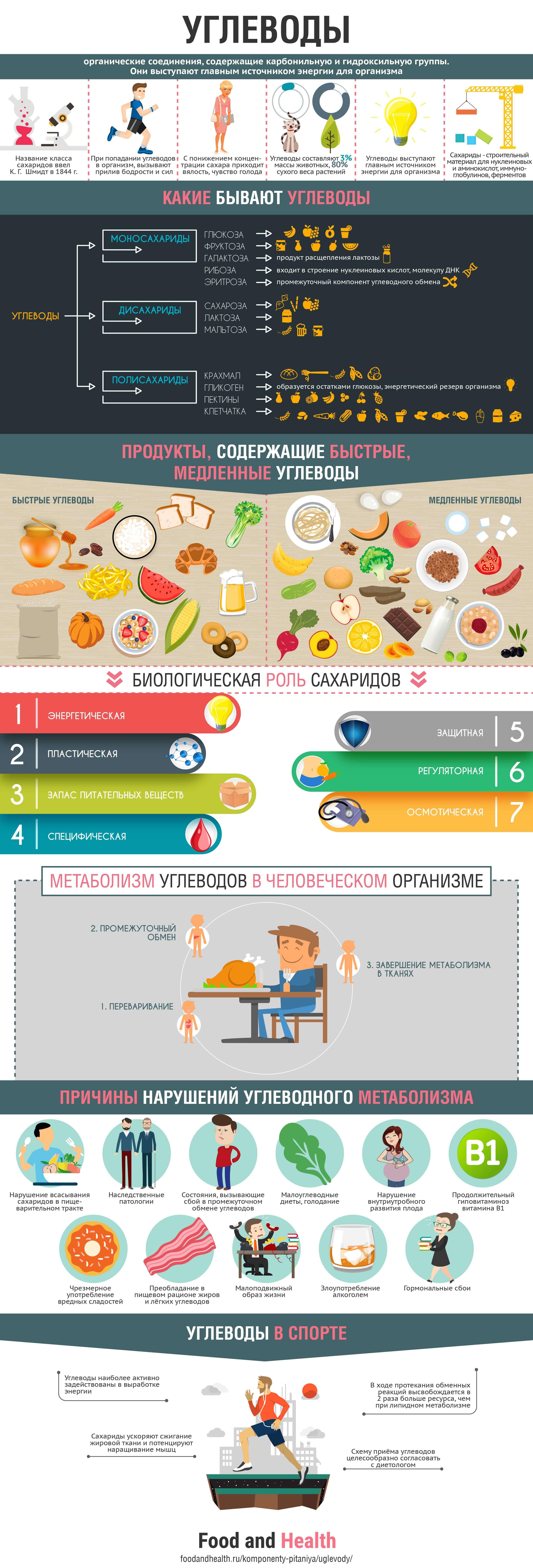 Углеводы: инфографика