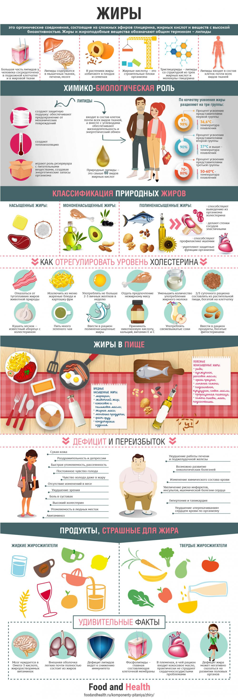 Жиры - инфографика