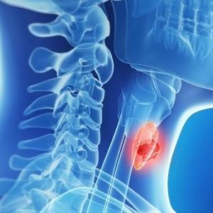 Бром и щитовидная железа