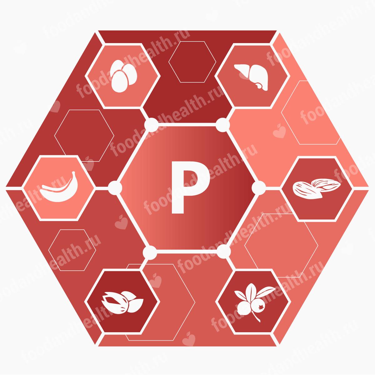 Какие продукты содержат кальций и фосфор