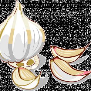 Сера в чесноке