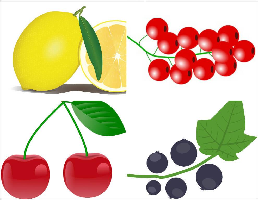 Суточная норма и источники органических кислот