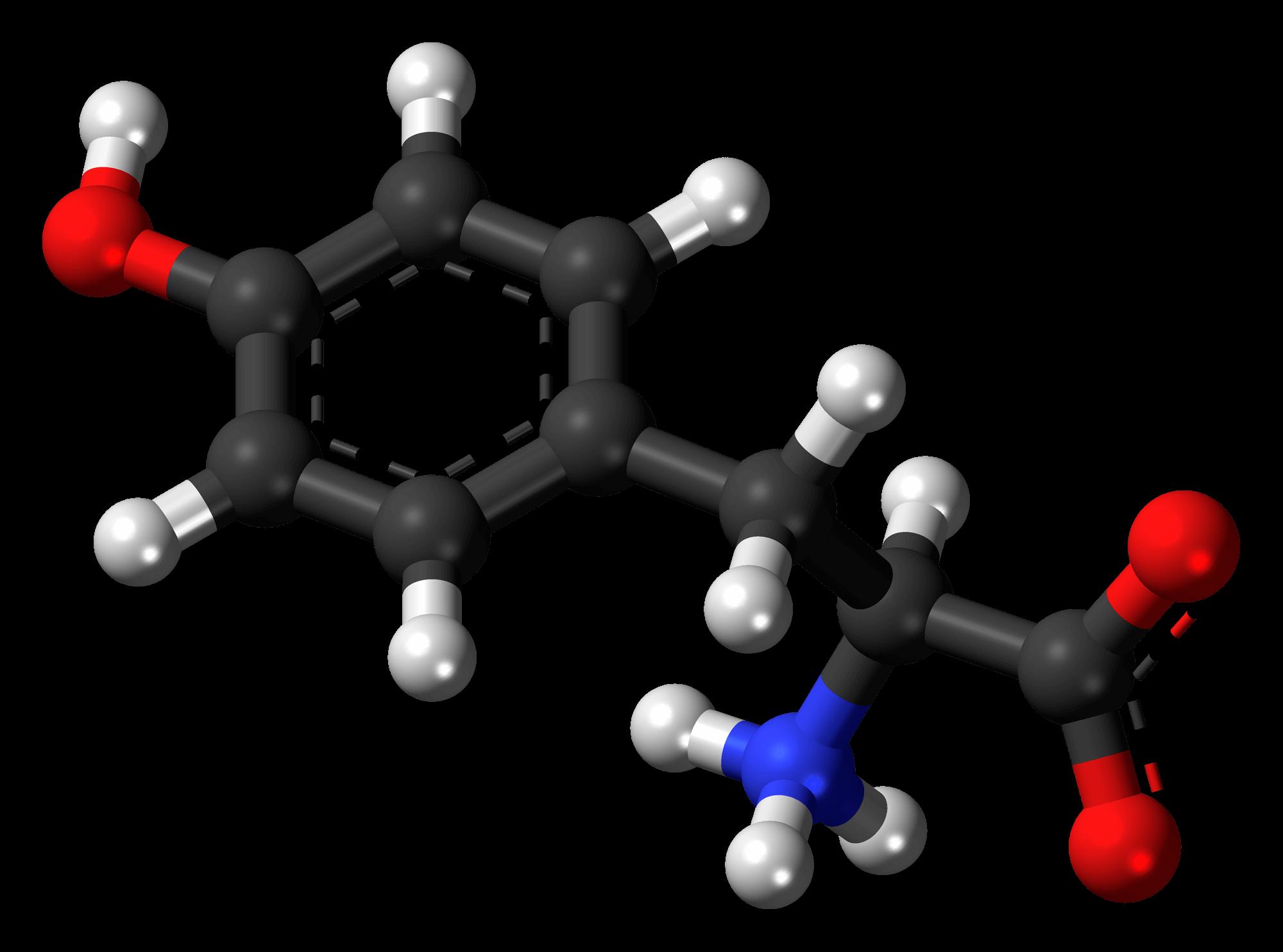 Тирозин L-тирозин инструкция по применению формула где содержится