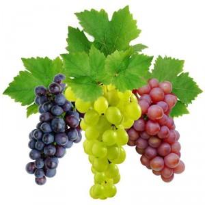 Винная кислота в винограде