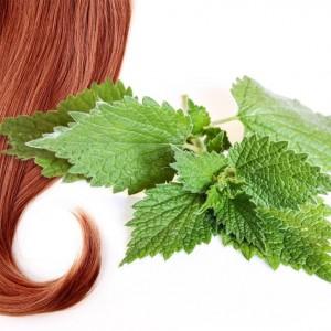 Витамины для волос женщин