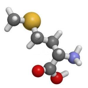 Взаимодействие метионина с другими элементами