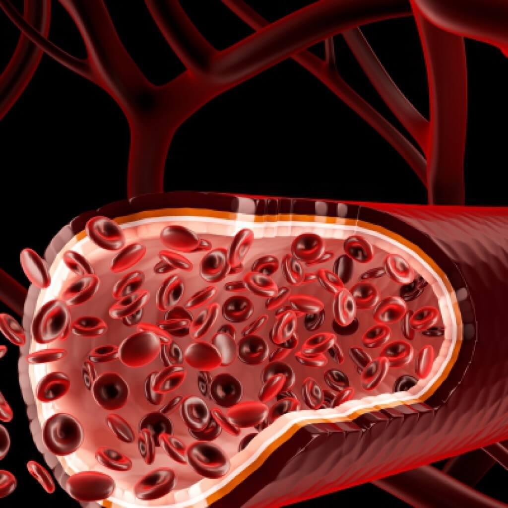 Как поднять гемоглобин в домашних условиях быстро? 95