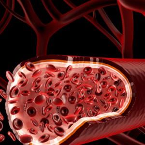 Дефицит гидроксипролина