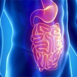 Галактоолигосахариды и кишечник