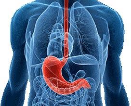 Гистидин при болезнях желудка