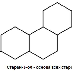 Характеристика стерина