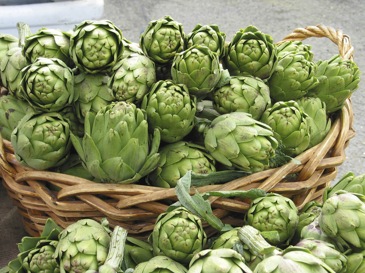 Artichoke: 4 ways to lose weight
