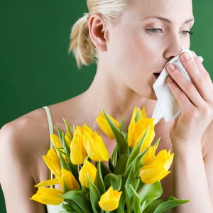 Хитин против аллергии