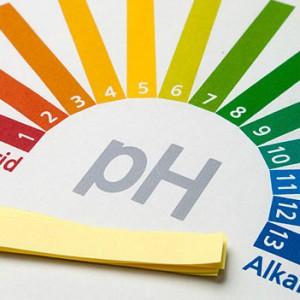 Влияние синбиотиков на pH