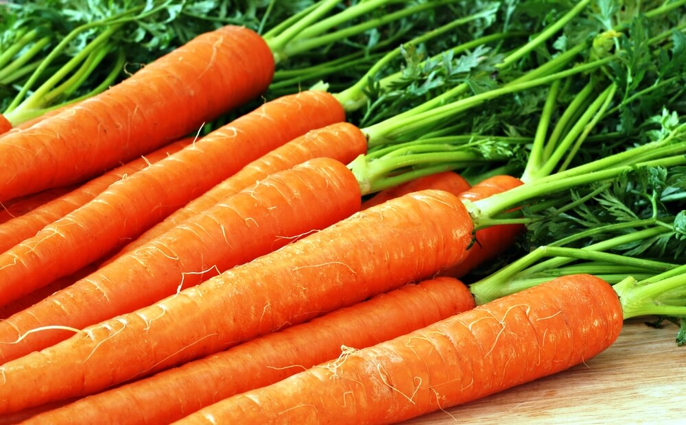 Морковь – польза, вред, правила выбора и калорийность