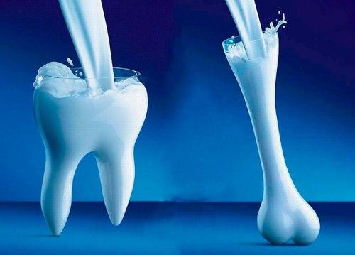 Польза молока для зубов и костей