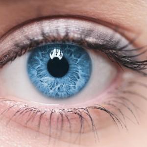 Польза сельди для зрения