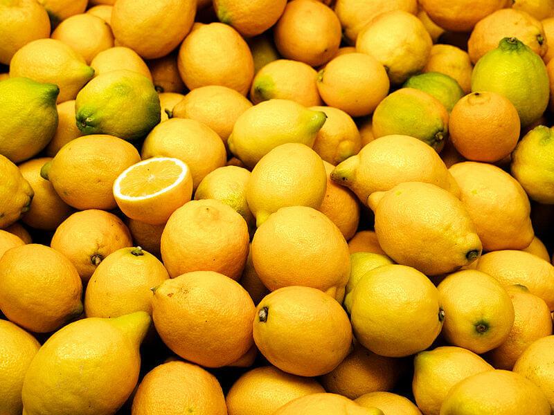Лимон: описание и сорта, состав и калорийность, польза и применение лимона