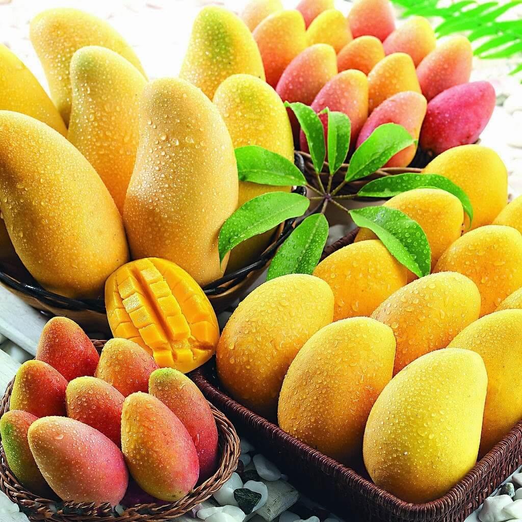 Манго фрукт польза и вред для организма женщин, мужчин и детей